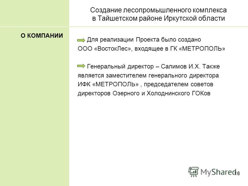 16 Создание лесопромышленного комплекса в Тайшетском районе Иркутской области Для реализации Проекта было создано ООО «ВостокЛес», входящее в ГК «МЕТРОПОЛЬ» Генеральный директор – Салимов И.Х. Также является заместителем генерального директора ИФК «М