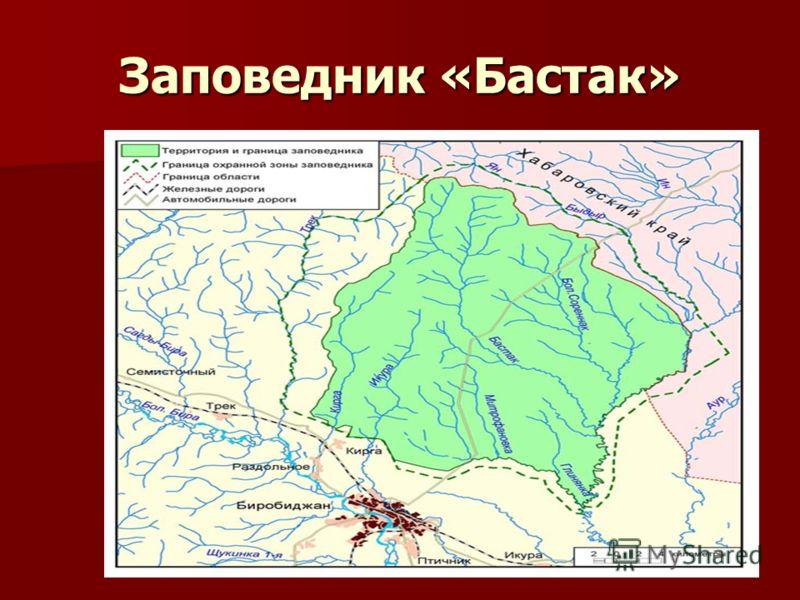 Заповедник «Бастак»