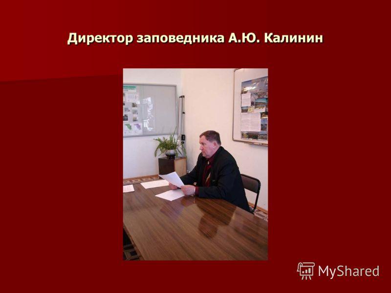 Директор заповедника А.Ю. Калинин