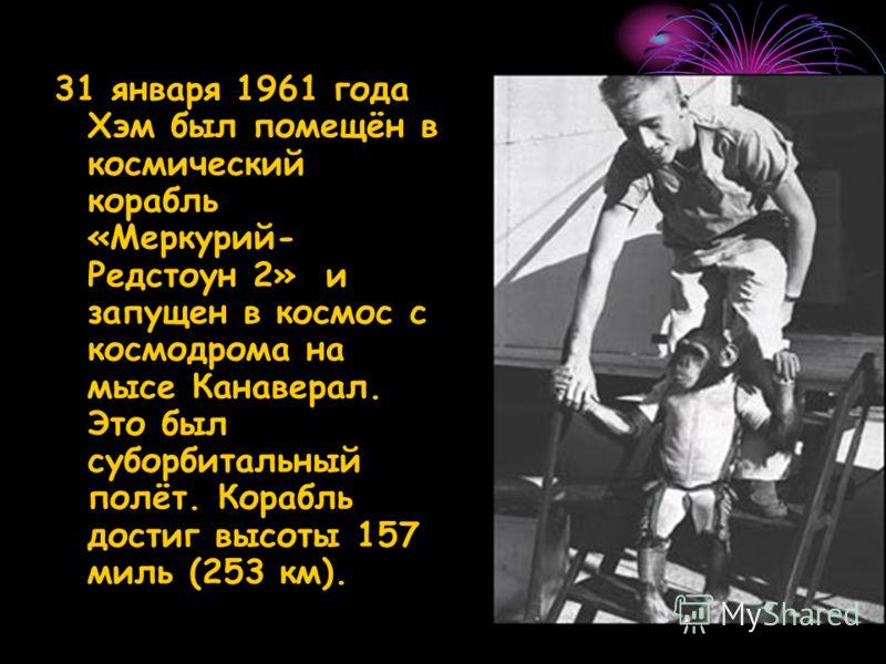 31 января 1961 года Хэм был помещён в космический корабль «Меркурий- Редстоун 2» и запущен в космос с космодрома на мысе Канаверал. Это был суборбитальный полёт. Корабль достиг высоты 157 миль (253 км).