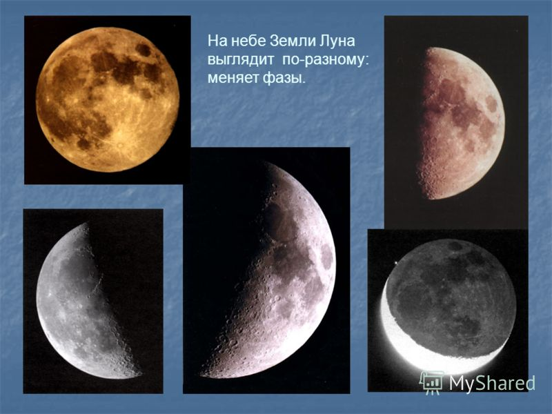 На небе Земли Луна выглядит по-разному: меняет фазы.