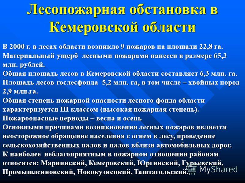 Лесопожарная обстановка в Кемеровской области В 2000 г. в лесах области возникло 9 пожаров на площади 22,8 га. Материальный ущерб лесными пожарами нанесен в размере 65,3 млн. рублей. Общая площадь лесов в Кемеровской области составляет 6,3 млн. га. П