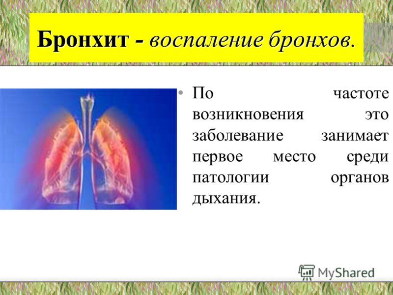 Бронхит - воспаление бронхов. По частоте возникновения это заболевание занимает первое место среди патологии органов дыхания.
