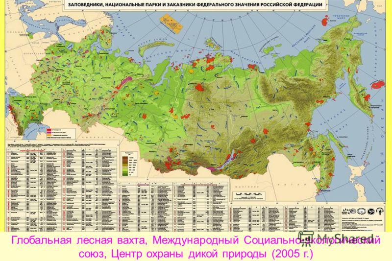 Глобальная лесная вахта, Международный Социально-экологический союз, Центр охраны дикой природы (2005 г.)