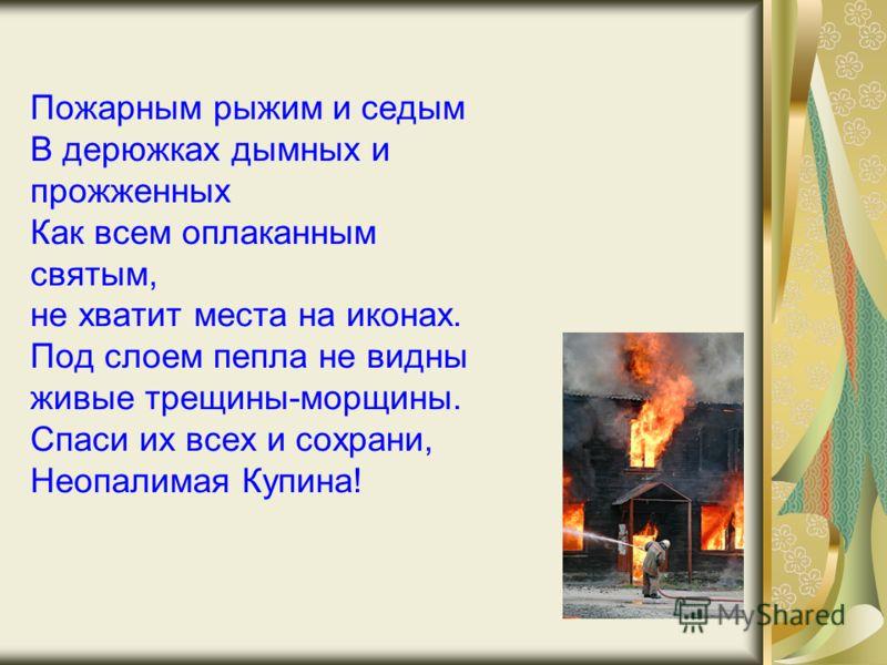 Пожарным рыжим и седым В дерюжках дымных и прожженных Как всем оплаканным святым, не хватит места на иконах. Под слоем пепла не видны живые трещины-морщины. Спаси их всех и сохрани, Неопалимая Купина!