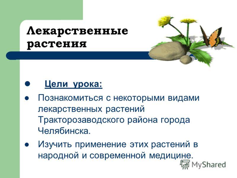 Лекарственные растения Цели урока: Познакомиться с некоторыми видами лекарственных растений Тракторозаводского района города Челябинска. Изучить применение этих растений в народной и современной медицине.
