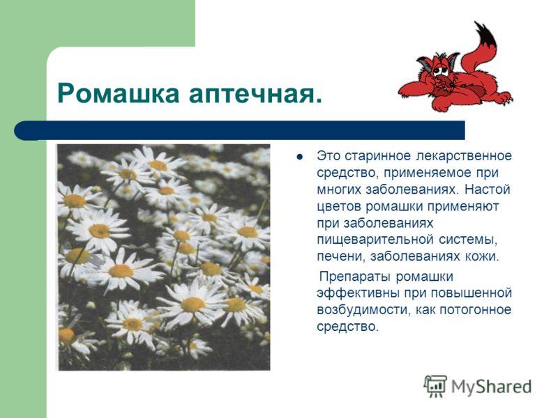 Ромашка аптечная. Это старинное лекарственное средство, применяемое при многих заболеваниях. Настой цветов ромашки применяют при заболеваниях пищеварительной системы, печени, заболеваниях кожи. Препараты ромашки эффективны при повышенной возбудимости