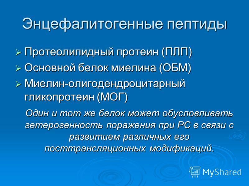 Энцефалитогенные пептиды Протеолипидный протеин (ПЛП) Протеолипидный протеин (ПЛП) Основной белок миелина (ОБМ) Основной белок миелина (ОБМ) Миелин-олигодендроцитарный гликопротеин (МОГ) Миелин-олигодендроцитарный гликопротеин (МОГ) Один и тот же бел