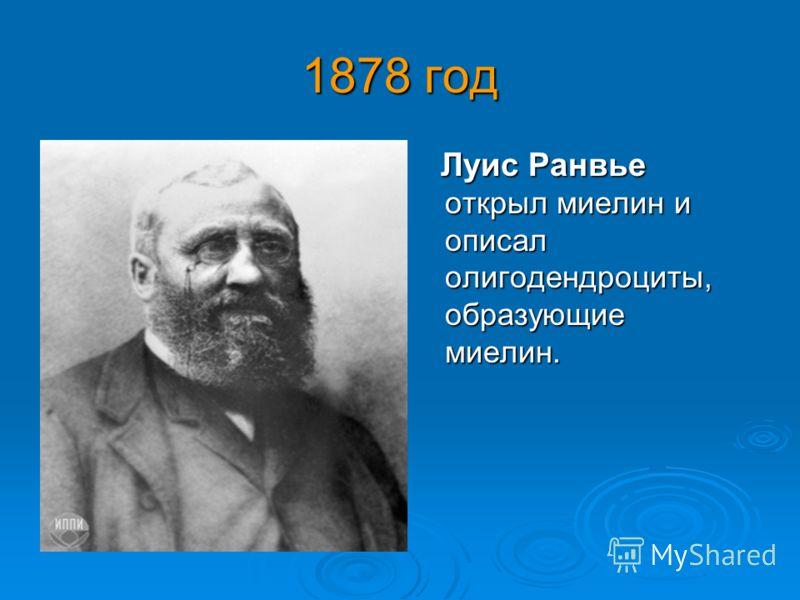 1878 год Луис Ранвье открыл миелин и описал олигодендроциты, образующие миелин. Луис Ранвье открыл миелин и описал олигодендроциты, образующие миелин.