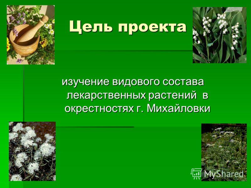 Лекарственные растения Проектвыполнен учащимися учащимися 5Б класса 5Б класса Руководитель проекта: Пряникова Т.С.