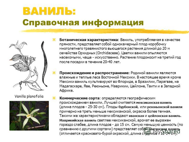 ВАНИЛЬ ВАНИЛЬ: Справочная информация z Ботаническая характеристика: Ваниль, употребляемая в качестве пряности, представляет собой однокамерный плод-коробочку многолетнего травянистого вьющегося растения длиной до 20 м семейства Орхидных (Orchidaceae)