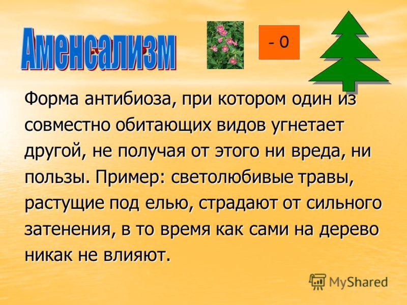 Аменсализм Форма антибиоза, при котором один из совместно обитающих видов угнетает другой, не получая от этого ни вреда, ни пользы. Пример: светолюбивые травы, растущие под елью, страдают от сильного затенения, в то время как сами на дерево никак не
