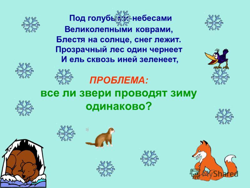 Авторы :Довбыш Елизавета, Маслова Екатерина Малышевский Матвей Киселев Егор