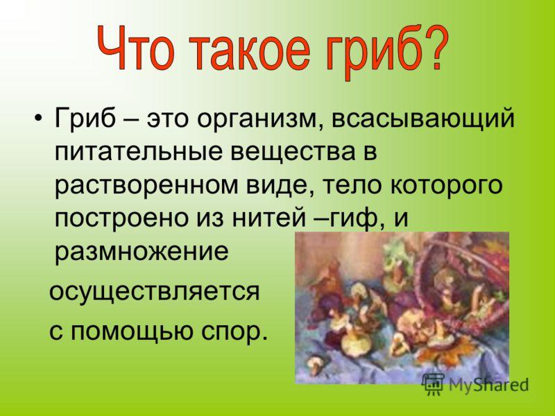 Гриб – это организм, всасывающий питательные вещества в растворенном виде, тело которого построено из нитей –гиф, и размножение осуществляется с помощью спор.