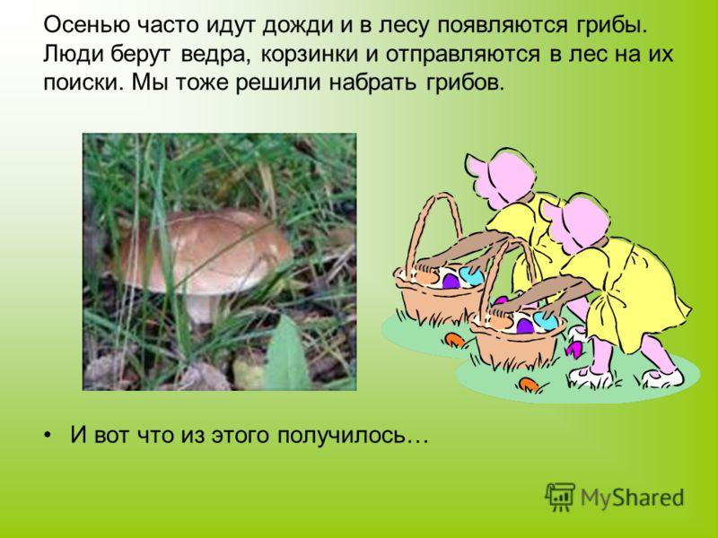 Осенью часто идут дожди и в лесу появляются грибы. Люди берут ведра, корзинки и отправляются в лес на их поиски. Мы тоже решили набрать грибов. И вот что из этого получилось…