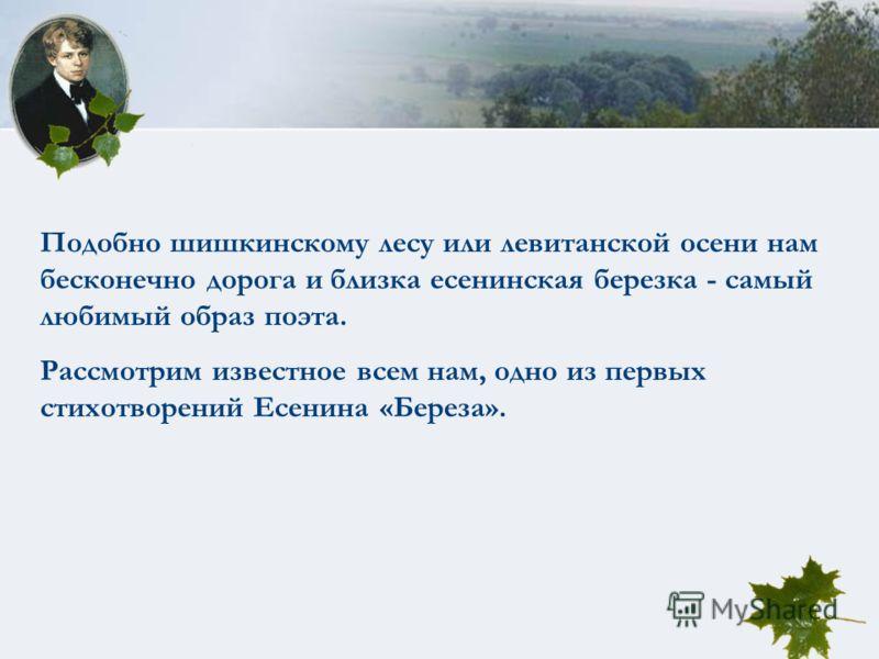 Подобно шишкинскому лесу или левитанской осени нам бесконечно дорога и близка есенинская березка - самый любимый образ поэта. Рассмотрим известное всем нам, одно из первых стихотворений Есенина «Береза».