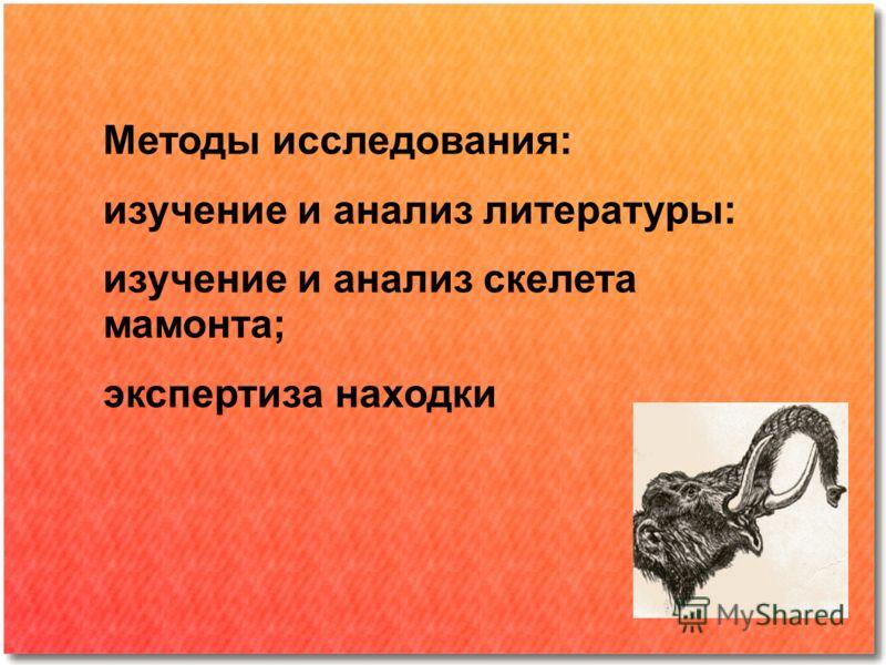 Методы исследования: изучение и анализ литературы: изучение и анализ скелета мамонта; экспертиза находки