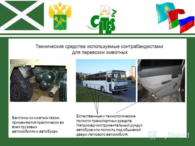 Технические средства используемые контрабандистами для перевозки животных Баллоны со сжатым газом, применяются практически во всех грузовых автомобилях и автобусах. Естественные и технологические полости транспортных средств. Например инструментальны
