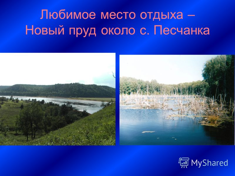 Любимое место отдыха – Новый пруд около с. Песчанка