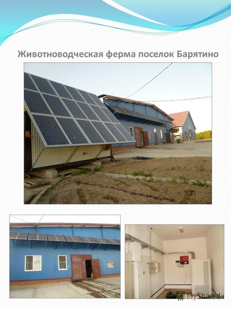 Животноводческая ферма поселок Барятино
