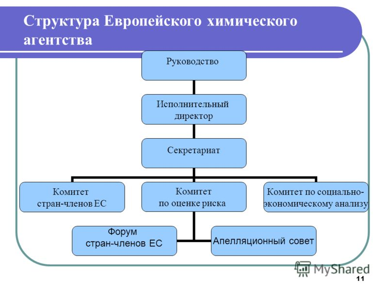 11 Структура Европейского