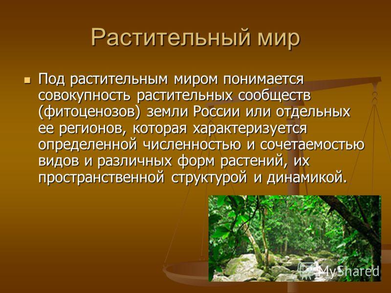 Растительный мир Под растительным миром понимается совокупность растительных сообществ (фитоценозов) земли России или отдельных ее регионов, которая характеризуется определенной численностью и сочетаемостью видов и различных форм растений, их простра