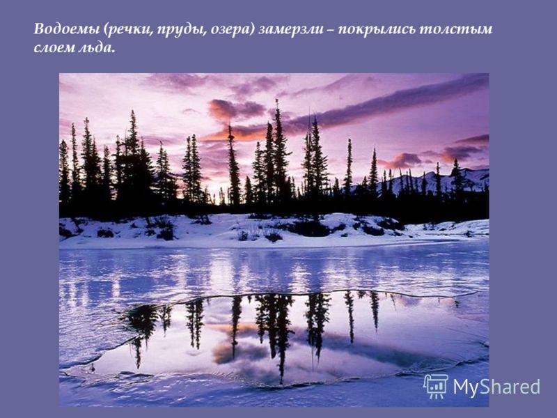 Водоемы (речки, пруды, озера) замерзли – покрылись толстым слоем льда.