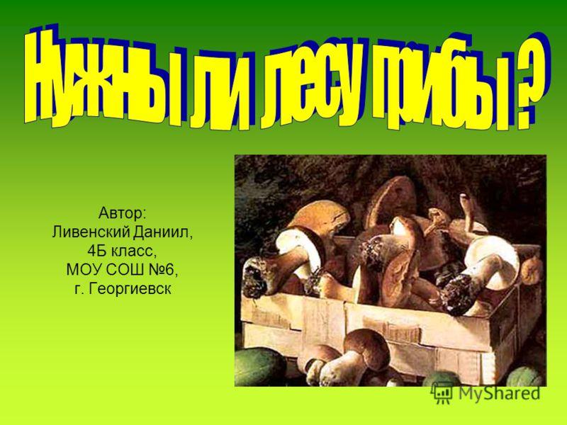 Автор: Ливенский Даниил, 4Б класс, МОУ СОШ 6, г. Георгиевск