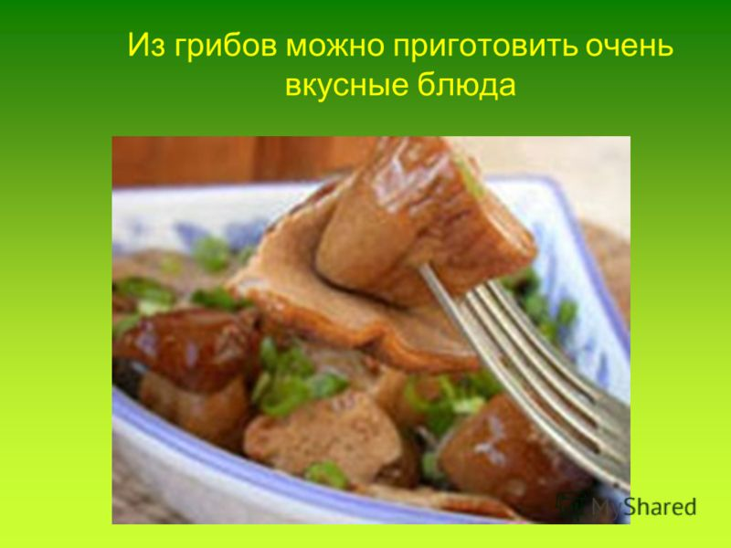 Из грибов можно приготовить очень вкусные блюда