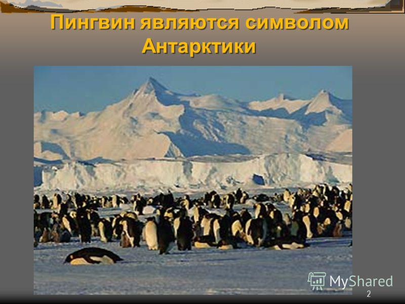 2 Пингвин являются символом Антарктики