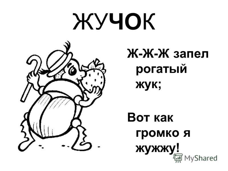 ЖУЧОК Ж-Ж-Ж запел рогатый жук; Вот как громко я жужжу!