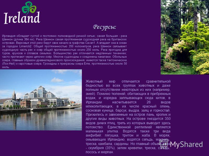 Ресурсы: Ирландия обладает густой и постоянно полноводной речной сетью; самая большая - река Шеннон (длина 384 км). Река Шеннон самая протяженная судоходная река на британских островах. Верховья этой реки берут свое начало в графстве Cavan1. А впада
