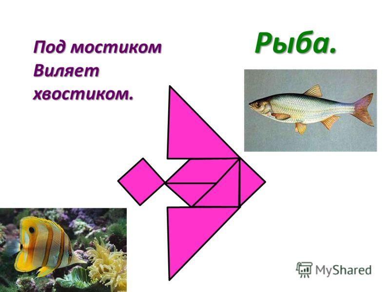Под мостиком Виляет хвостиком. Рыба.