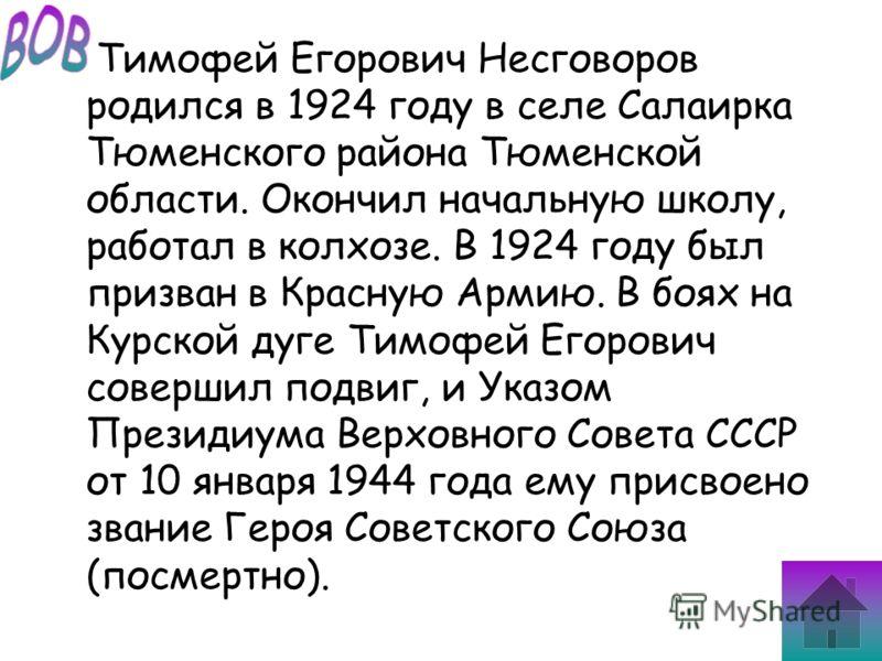 Тимофей Егорович Несговоров родился в 1924 году в селе Салаирка Тюменского района Тюменской области. Окончил начальную школу, работал в колхозе. В 1924 году был призван в Красную Армию. В боях на Курской дуге Тимофей Егорович совершил подвиг, и Указо