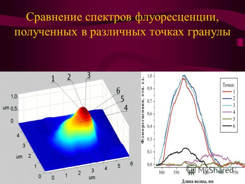 Сравнение спектров флуоресценции, полученных в различных точках гранулы