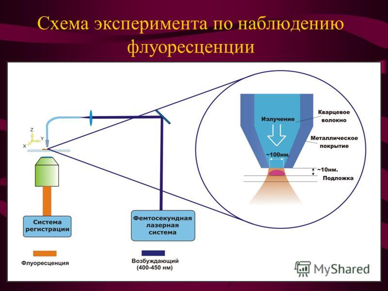Схема эксперимента по наблюдению флуоресценции