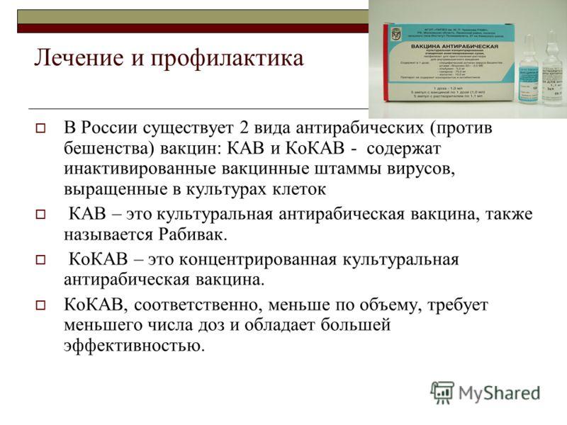 Лечение и профилактика В России существует 2 вида антирабических (против бешенства) вакцин: КАВ и КоКАВ - содержат инактивированные вакцинные штаммы вирусов, выращенные в культурах клеток КАВ – это культуральная антирабическая вакцина, также называет