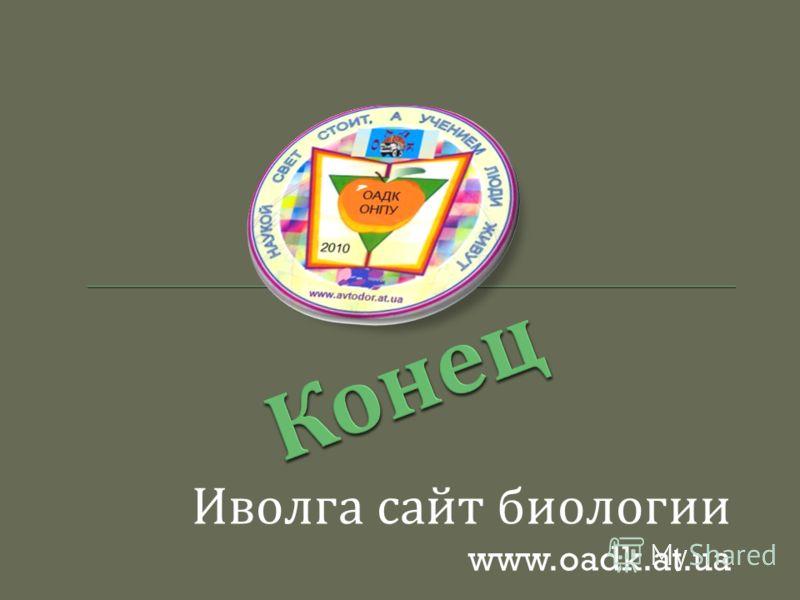 Иволга сайт биологии www.oadk.at.ua