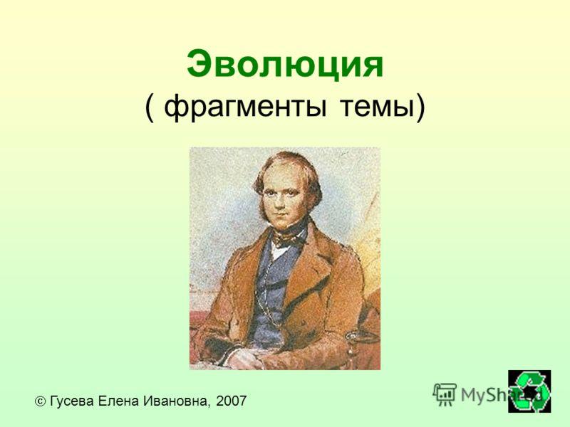 Эволюция ( фрагменты темы) Гусева Елена Ивановна, 2007