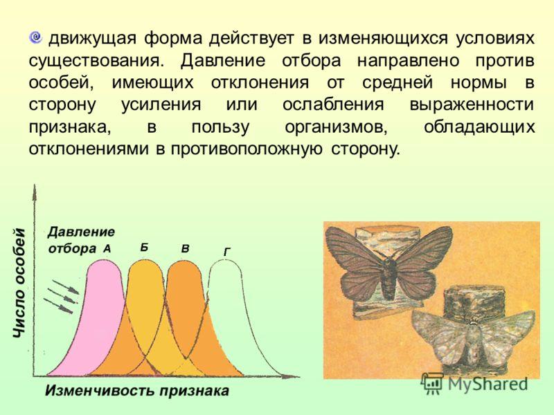 движущая форма действует в изменяющихся условиях существования. Давление отбора направлено против особей, имеющих отклонения от средней нормы в сторону усиления или ослабления выраженности признака, в пользу организмов, обладающих отклонениями в прот