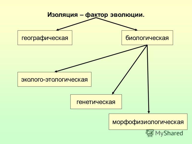 Изоляция – фактор эволюции. географическаябиологическая морфофизиологическая генетическая эколого-этологическая