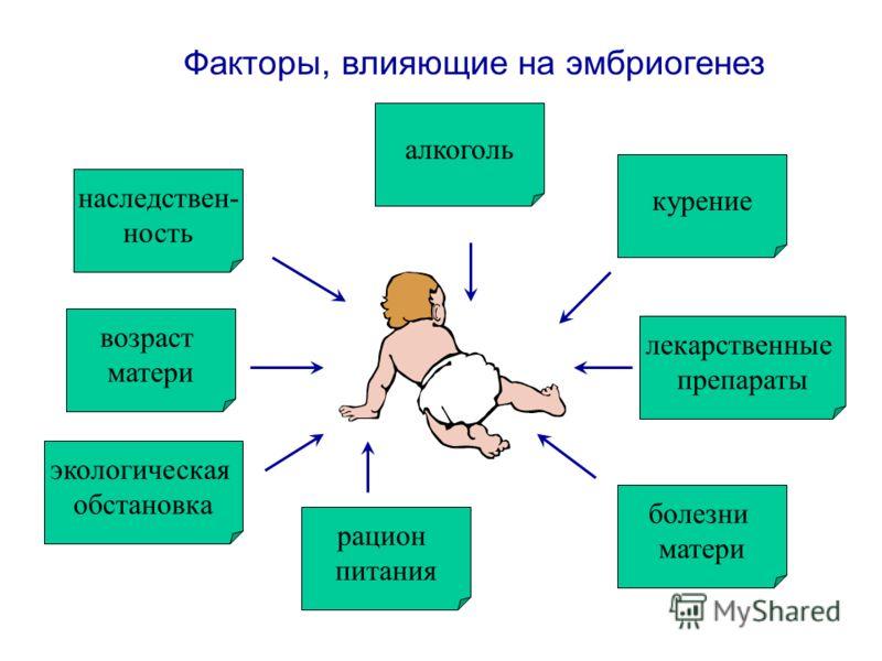 Презентация Факторы Влияющие На Здоровье Человека