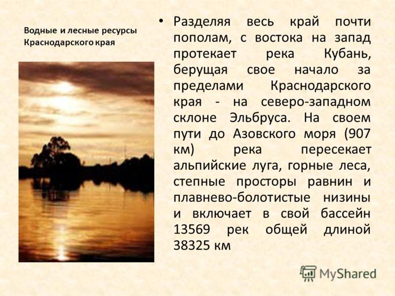 Водные и лесные ресурсы Краснодарского края Разделяя весь край почти пополам, с востока на запад протекает река Кубань, берущая свое начало за пределами Краснодарского края - на северо-западном склоне Эльбруса. На своем пути до Азовского моря (907 км
