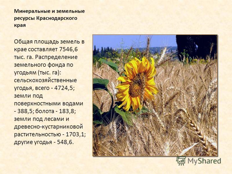 Минеральные и земельные ресурсы Краснодарского края Общая площадь земель в крае составляет 7546,6 тыс. га. Распределение земельного фонда по угодьям (тыс. га): сельскохозяйственные угодья, всего - 4724,5; земли под поверхностными водами - 388,5; боло