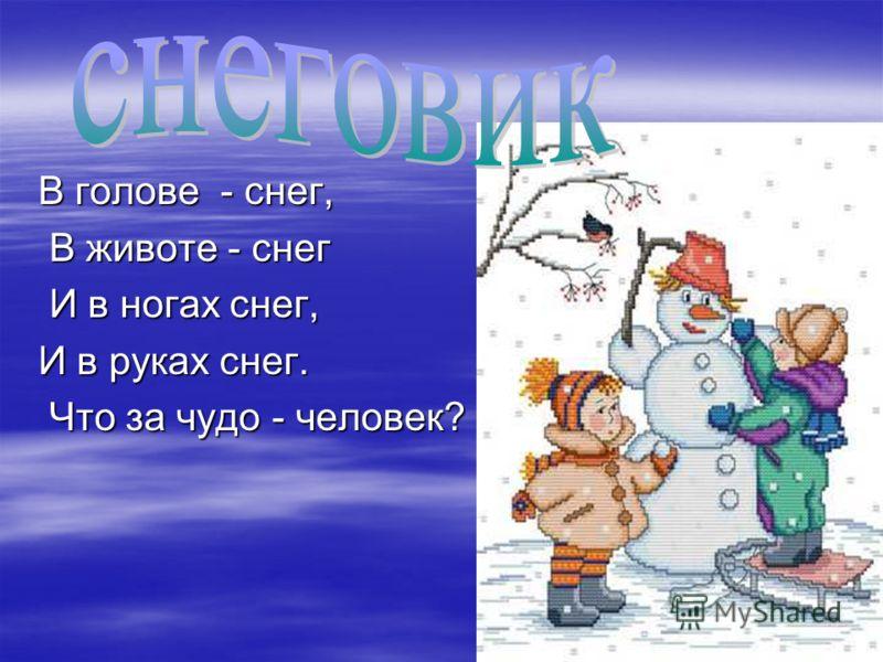 В голове - снег, В животе - снег В животе - снег И в ногах снег, И в ногах снег, И в руках снег. Что за чудо - человек? Что за чудо - человек?