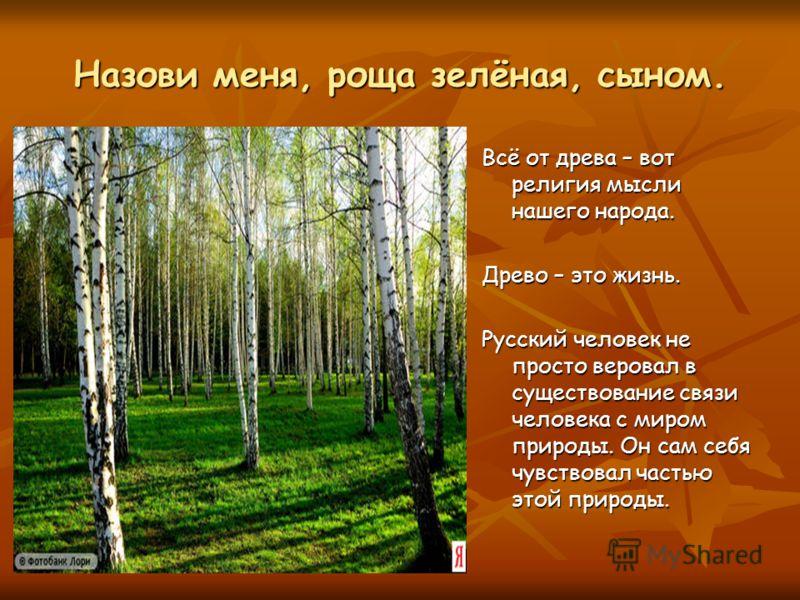 Назови меня, роща зелёная, сыном. Всё от древа – вот религия мысли нашего народа. Древо – это жизнь. Русский человек не просто веровал в существование связи человека с миром природы. Он сам себя чувствовал частью этой природы.