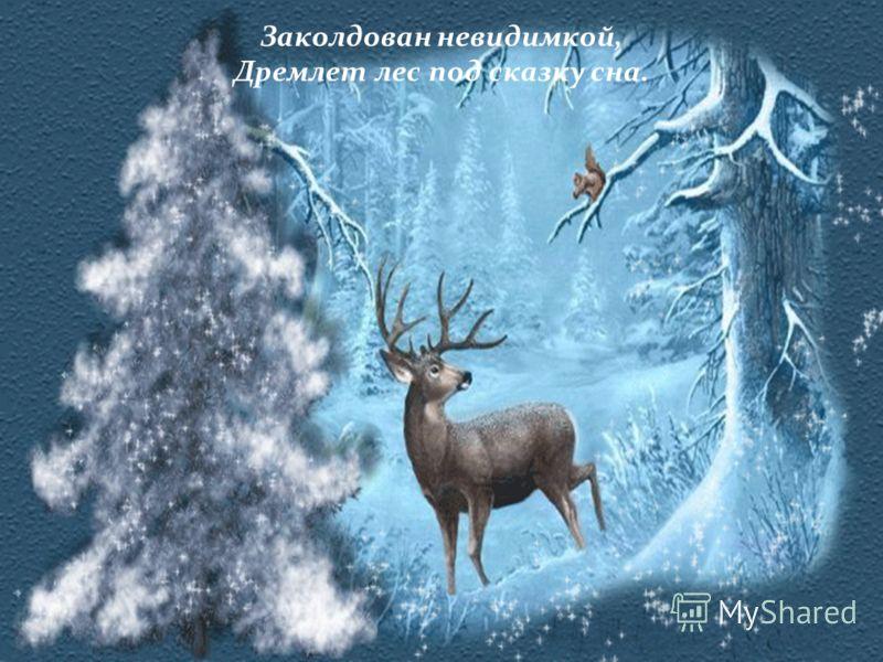 Заколдован невидимкой, Дремлет лес под сказку сна.