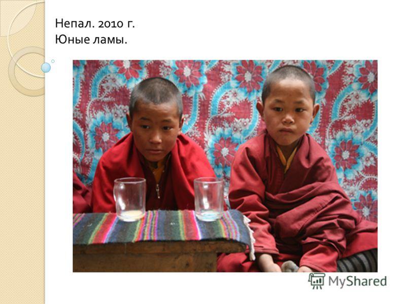 Непал. 2010 г. Юные ламы.