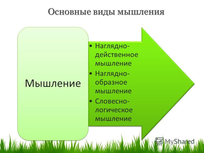 Основные виды мышления Наглядно- действенное мышление Наглядно- образное мышление Словесно- логическое мышление Мышление