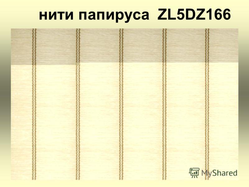 нити папируса ZL5DZ166